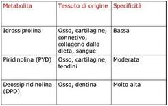 Specificità dei cross link pirolidinici