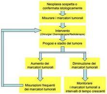 I marcatori tumorali nella gestione clinica del paziente