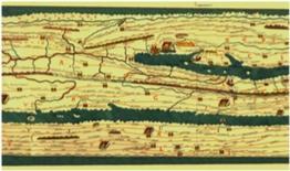Itineraium pictum: Tabula Peutigeriana. Fonte: Università di Bologna
