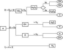 Diagramma di flusso delle principali reazioni del sistema idrogeno-ossigeno