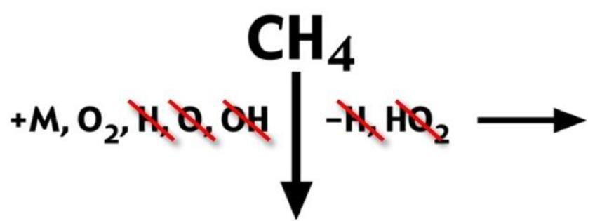 Nella fase di autoignizione sono presenti solo il combustibile ed il diluente.