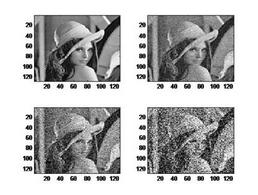 Immagine in bianco e nero. L'immagine di partenza è usualmente utilizzata  nel DSP per la valutazione di algoritmi  diversi di elaborazione delle immagini.