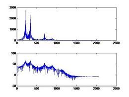 Spettro del la risposta impulsiva ad una singola vocale e spettro del segnale vocale.