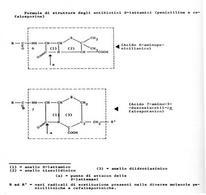 Struttura chimica di antibiotici beta-lattamici.