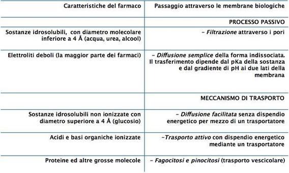 Passaggio dei farmaci attraverso le membrane biologiche