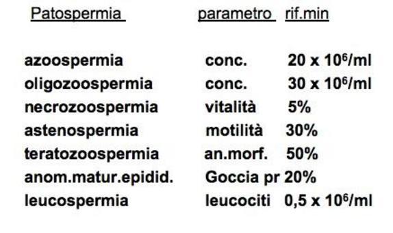 Principali patologie spermatiche.
