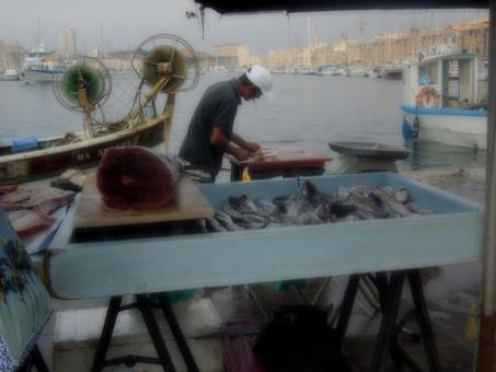 Marsiglia città portuale. La grande pensilina specchiata  di nuova costruzione (2013) non impedisce il proseguire della vendita tradizionale del pesce da parte dei pescatori (foto dell'a. 2013).