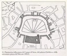 Siena. Planimetria della piazza del Campo con il palazzo pubblico e il mercato.