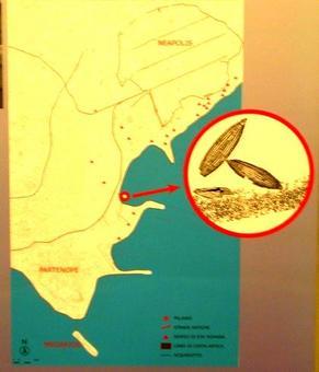 Neapolis. La città greco romana ed il bacino portuale ( da Mostra al Nuovo  Museo Archeoilogico di Napoli,  foto dell'a.2007)