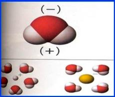 Polarità della molecola di acqua.