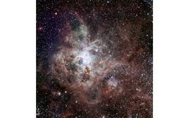 The Tarantula Nebula, a large HII region locate in the Large Magellanic Cloud. Credit: ESO.