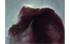 The Horse Head in Orion constellation. Image obtained with WFPC2, HST.  Credit: NASA.