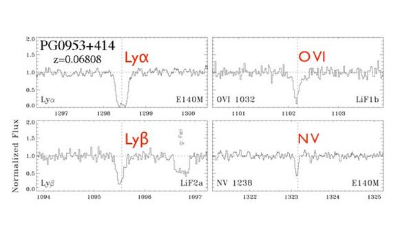 Absorption lines seen in the spectrum of a distant quasar. Adapted from Danforth & Shull (2008).