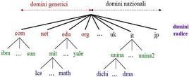 Organizzazione dei domini.