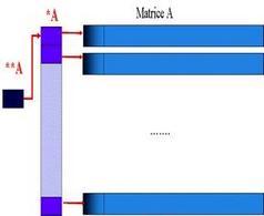 Allocazione dinamica di Matrici.