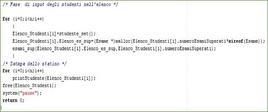 Codice_C_13