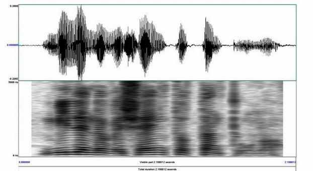 """Forma d'onda della parola """"millenovecentottantuno"""" e il suo spettrogramma narrow band corrispondente"""