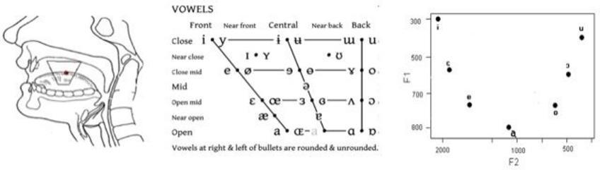 Vocali articolate nel cavo orale e corrispondente diagramma F2/F1.