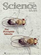Copertina di Science [n° 287/2000]
