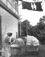 Clinica Lebensborn