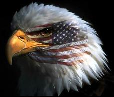 American Eagle. Fonte: Political Spot