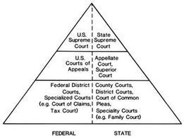 Tribunali statali e federali