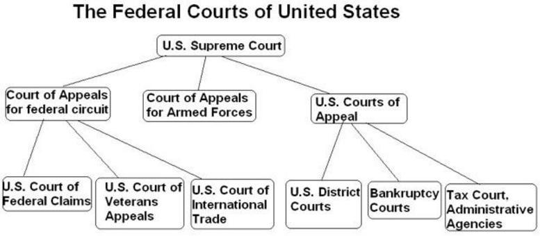Le Corti Federali degli Stati Uniti. Fonte: 4lawschool