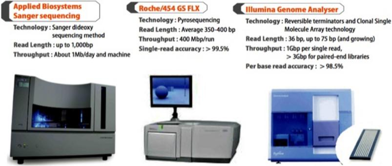 "I tre sequenziatori automatici di DNA attualmente più diffusi: Sequenziatore ""classico"" a 96 capillari 9600 Applied Biosystems. Sequenziatore di II generazione 454 GS Roche. Sequenziatore di II generazione Illumina/Solexa"