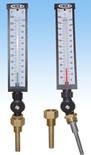 Esempi di termometri.