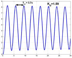 Oscillazioni permanenti per l'esempio considerato.