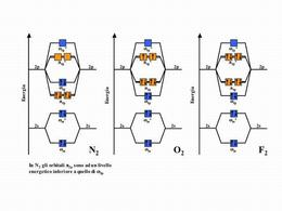 Riempimento degli orbitali molecolari leganti ed antileganti in N2, O2 ed F2.