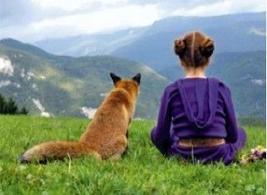 """La natura. (Locandina del film """"La volpe e la bambina"""" Fonte: Msn"""