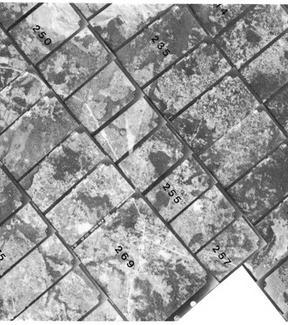 Fotoindici di strisciate aerofotogrammetriche