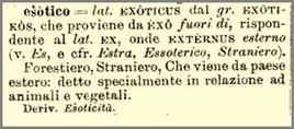 "Etimologia di ""esotico"". Fonte: Etimo"