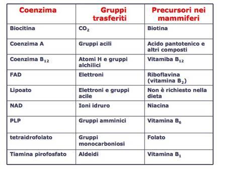 Alcuni coenzimi che svolgono il ruolo di trasportatori transienti di specifci atomi o gruppi funzionali.