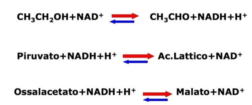 Se etanolo è presente in eccesso le  tre reazioni sono spostate verso destra.