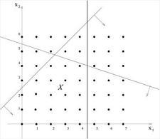 Rappresentazione grafica della regione ammissibile di un generico problema di PLI. Disegnata da Paola Festa