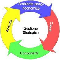 Le determinanti della gestione strategica