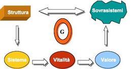 Il ciclo della vitalità