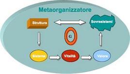 Il ruolo del metaorganizzatore nel ciclo della vitalità