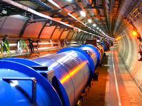 Figura 1.1b. L'acceleratore di particelle LHC del CERN di Ginevra
