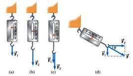 Figura 4.2. Natura vettoriale delle forze (immagine tratta dal Serway)