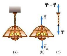 """Figura 5.1. Un lampadario appeso al soffitto tramite una catenella di massa trascurabile. Fonte: Serway, Jewett, """"Principi di Fisica Vol I"""", Edises."""