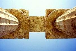 Capitelli del Tempio di Cerere a Paestum