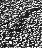 Caraceni, Labirinto struttura, 1967