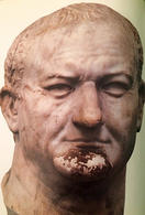 Vespasian. (Image supplied by the author)