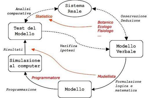Modellizzazione: le competenze