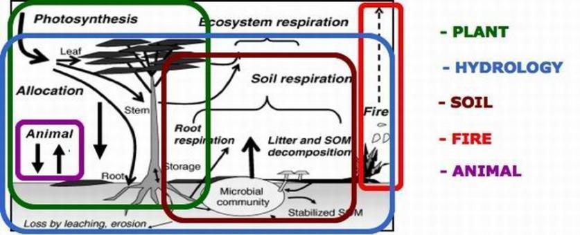 L'ecosistema come sistema modulare