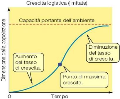 La tipica curva di crescita di un modello logistico