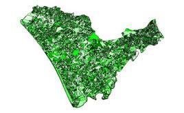 Mappa della vegetazione della piana di Paestum ottenuta attraverso una simulazione